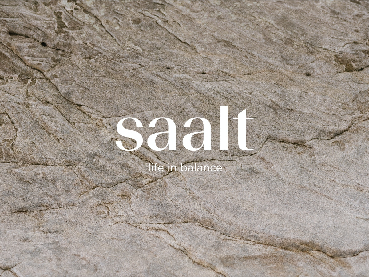 Saalt logo placed on rocks